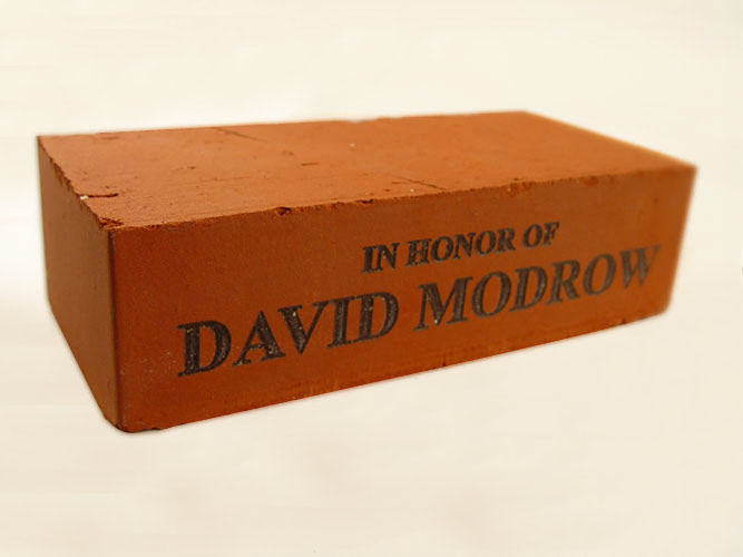 Laser engraved donor brick